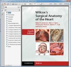 Wilcox`s Surgical Anatomy of the Heart 4th Edition(威尔科克斯心脏外科解剖学 第4版)
